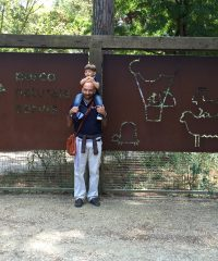 Parco Naturale Milano Marittima